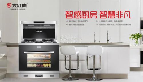 大红鹰电器:为美好生活提供高端厨房生活范本